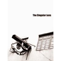 sarai_working_questions_08_singular_lens.pdf