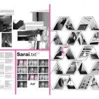 sarai_broadsheet08_draft_02.pdf
